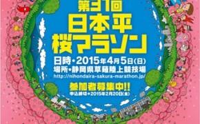 2015桜マラソン_04ol